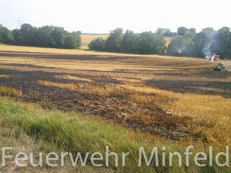 flaechenbrand09082013-1