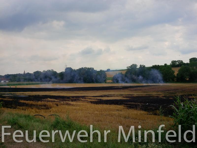 flaechenbrand09082013-2