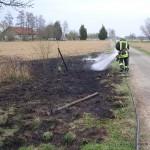 Flächenbrand Minfeld - Freckenfeld 31.03.2012 1