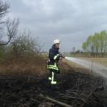 Flächenbrand Minfeld - Freckenfeld 31.03.2012 2