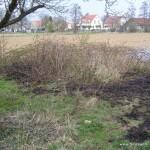 Flächenbrand Minfeld - Freckenfeld 31.03.2012 3