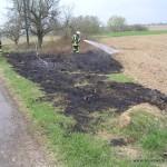 Flächenbrand Minfeld - Freckenfeld 31.03.2012 5